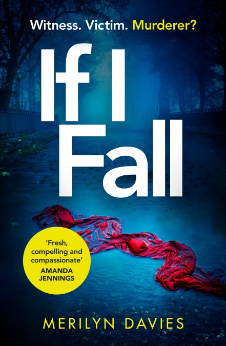 If I Fall by Merilyn Davies