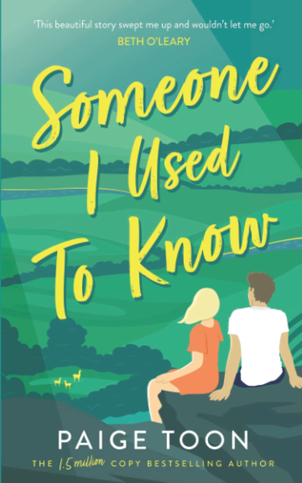 Someone I Used To Know by Paige Toon